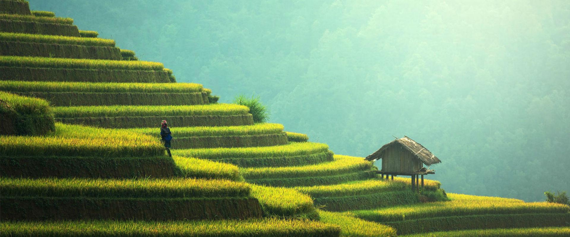 slider-agriculture1